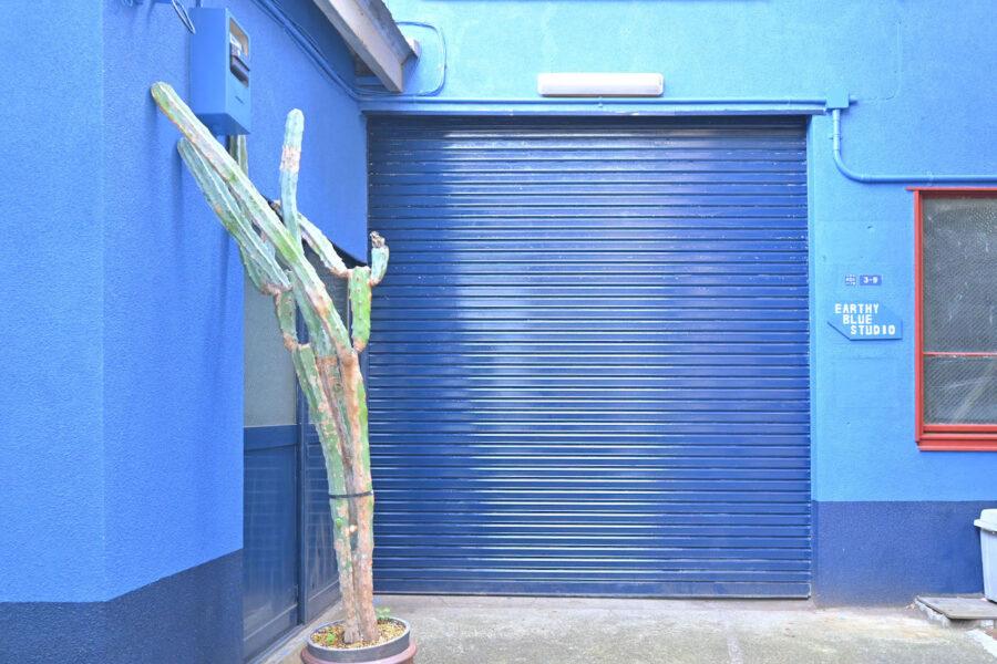 Earthy Blue Studio12